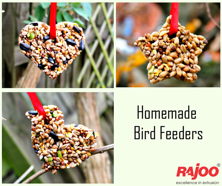 :: Homemade Bird Feeders ::  #RajooEngineers #Rajkot