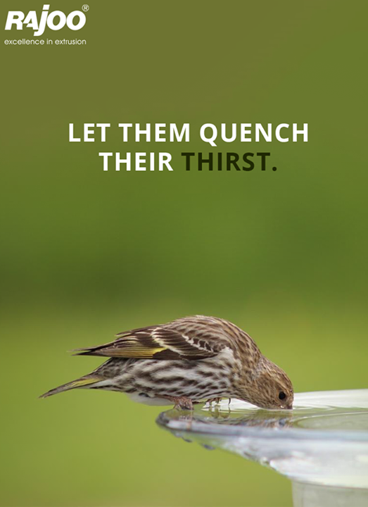 This summers keep a bowl of water in your balcony or outside your house to let the birds quench their thirst.  #SocialCause #DoItYourself #Water #SummerHeat #RajooEngineers #Rajkot