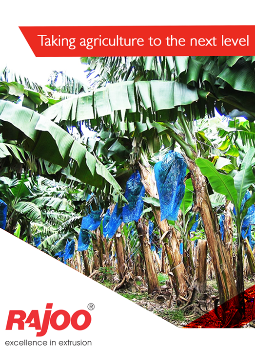 Taking agriculture to the next level with agriculture Banana Bags!  #Plastics #RajooEngineers #Rajkot