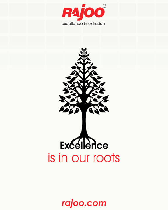 Excellence is the root cause of Rajoo Engineers Limited,India's growth.  #RajooEngineers #Rajkot
