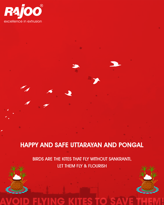 Birds are the kites that fly without Sankranti, let them fly & flourish!   #HappyUttarayan #Uttarayan2018 #IndianFestivals #FestivalsOfIndia #KiteFestival #KiteFlying #RajooEngineers #Rajkot #PlasticMachinery #Machines #PlasticIndustry