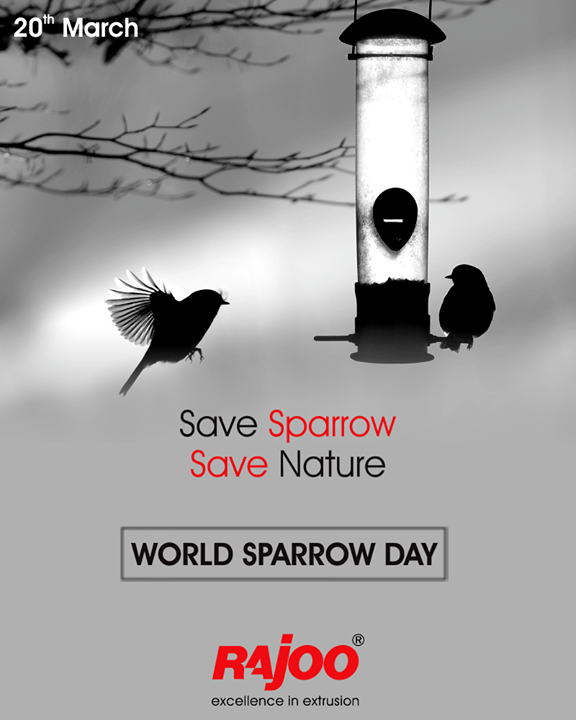Let's take effort to save chirping sparrows to maintain the essence of nature!   #WorldSparrowDay #RajooEngineers #Rajkot #PlasticMachinery #Machines #PlasticIndustry