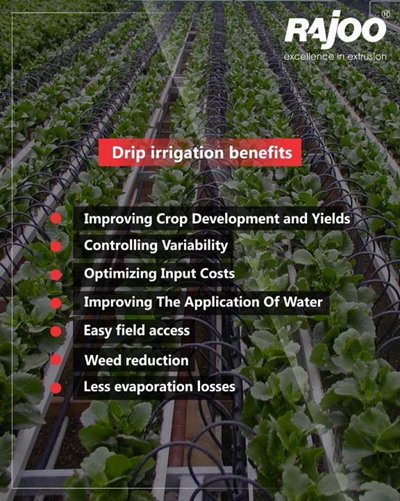 The hallmark of drip irrigation is the system's ability to efficiently water plants because of controlled delivery of water directly to the ground. Drip irrigation systems consist of tubing through which water travels from its source to drip emitters  #RajooEngineers #Rajkot #PlasticMachinery #Machines #PlasticIndustry